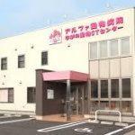 【信州】長野の動物病院