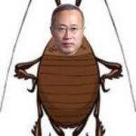 【社会】民進党・有田芳生「日本人に『ゴキブリ』と呼んでもそれは罵倒語ではあってもヘイトスピーチではない」★2