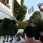 【公鷹鴎】パリーグファン集合【獅鷲牛】★5