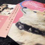 【神奈川】「犬猫を殺処分する施設から動物愛護拠点への転換」動物保護センター、寄付で建て替え断念 目標大幅に下回る