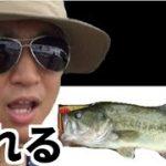 【ジャイアン】釣りよかでしょうpart12【豚ゴリラ】
