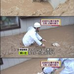 NHK教育を見て54402倍賢くイヌ