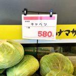 キャベツ一玉580円、白菜一玉798円…野菜の価格高騰が止まらない[741292766]