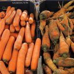 【野菜高騰】キャベツ3・1倍、レタス3・5倍、ダイコン2・7倍、ハクサイ1・6倍…高値続く★3