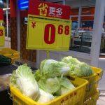 中国上海の野菜安すぎワロタw大根25円、白菜12円[148827948]