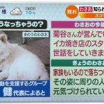 【訃報】菊谷節子さん死去 73歳 「ブサかわ犬」わさおの飼い主 青森