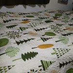 関西ローカル70972☆(・3・)アルェーニトリのマットレスとベッドパッドと掛け布団とか来たYO