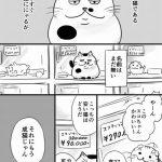 【アラシ厳禁】猫ブログ総合Part44