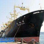 【下関】調査捕鯨終えた船団が帰港 南極海で333頭を捕獲SSの妨害は受けず