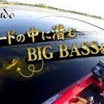 【2ST】バスボート総合スレ(その25)【4ST】